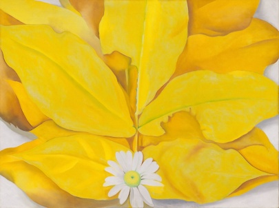 yellow hickory leaves